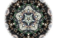 Rosettfönster