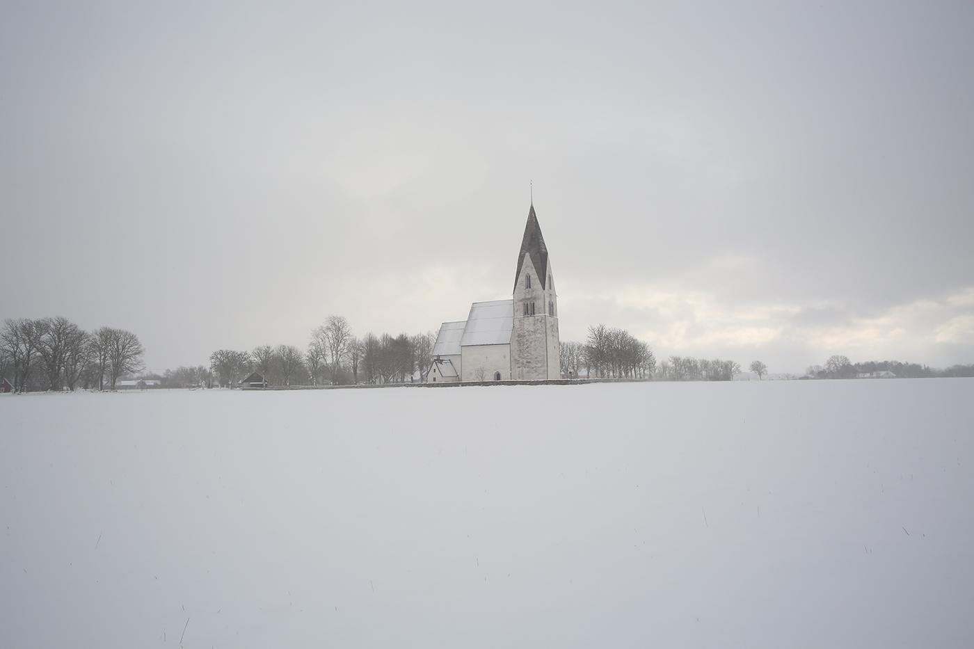 Gotländskt januariljus